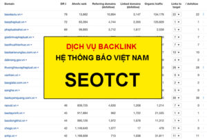 backlink-bao-1